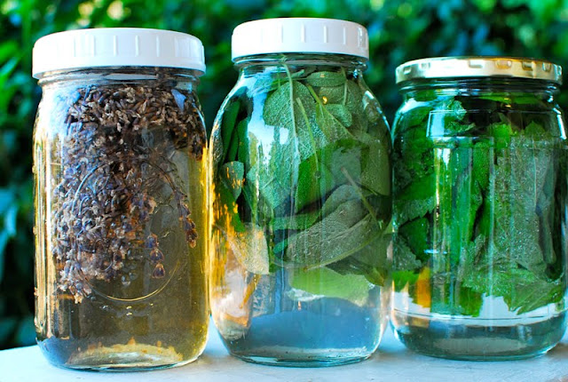How to Brew Herbal Sun Teas