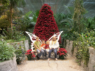 branson, butterfly palace