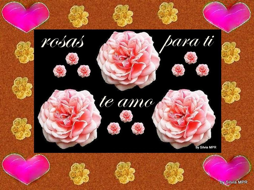 Imagenes De Rosas Y Corazones Con Frases