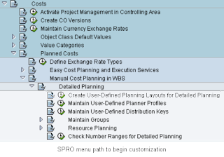 Muralidhar Lanka: Excel Integrated Project Cost Planning for SAP