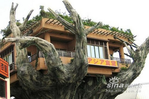 Strange Weird, Crazy And Unusual Houses Ever!