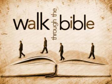 Through the Bible in One Year: A 52 Lesson Introduction to the 66 Books of the Bible