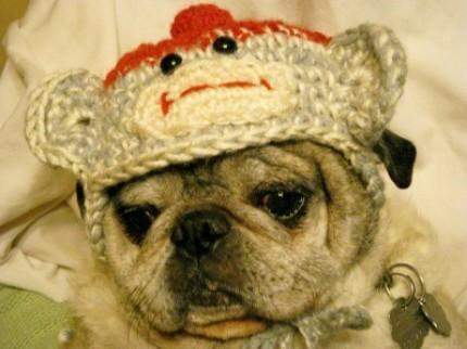 Life is art ... Art is Life: Crochet Pattern - Dog Bobble Hat