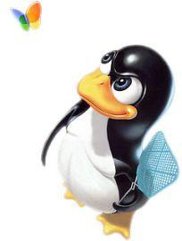Linux su Windows