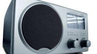Ascoltare le Radio FM su internet e registrare su pc