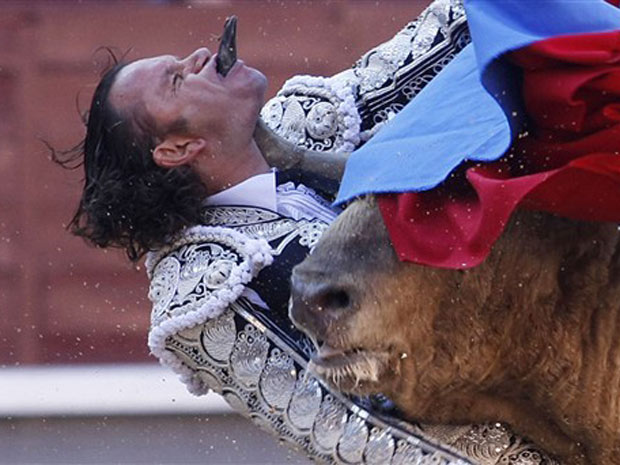 O toureiro espanhol Julio Aparicio tem a cabeça atravessada pelos chifres de um touro. Bem feito!
