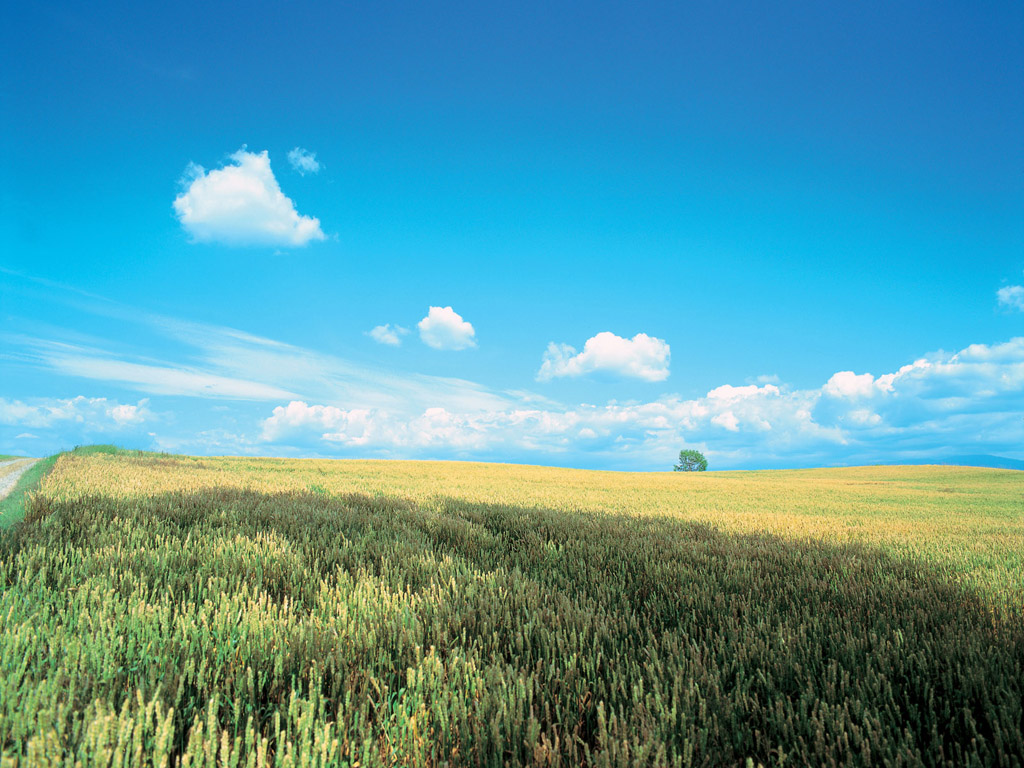 Pc wallpapers - Free landscape backgrounds ...
