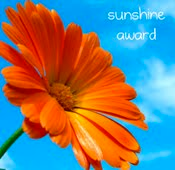Another Blog Award