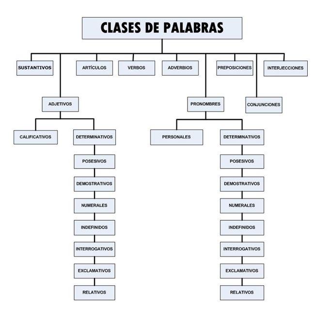 Gramática Clases De Palabras