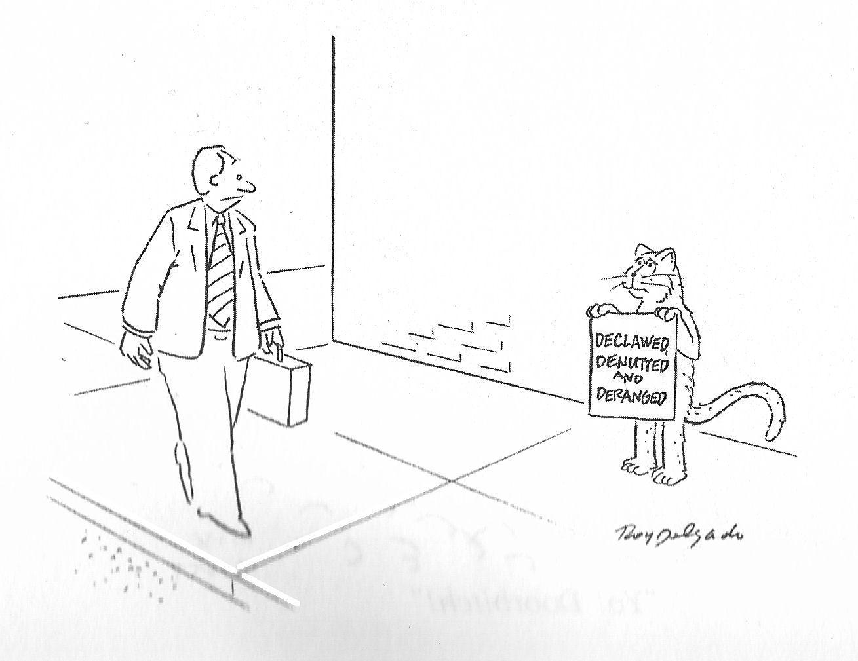 Roy Delgado Blog National Lampoon Cartoons