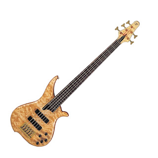 bass review for bassist tune twb53 qm 5 string bass. Black Bedroom Furniture Sets. Home Design Ideas
