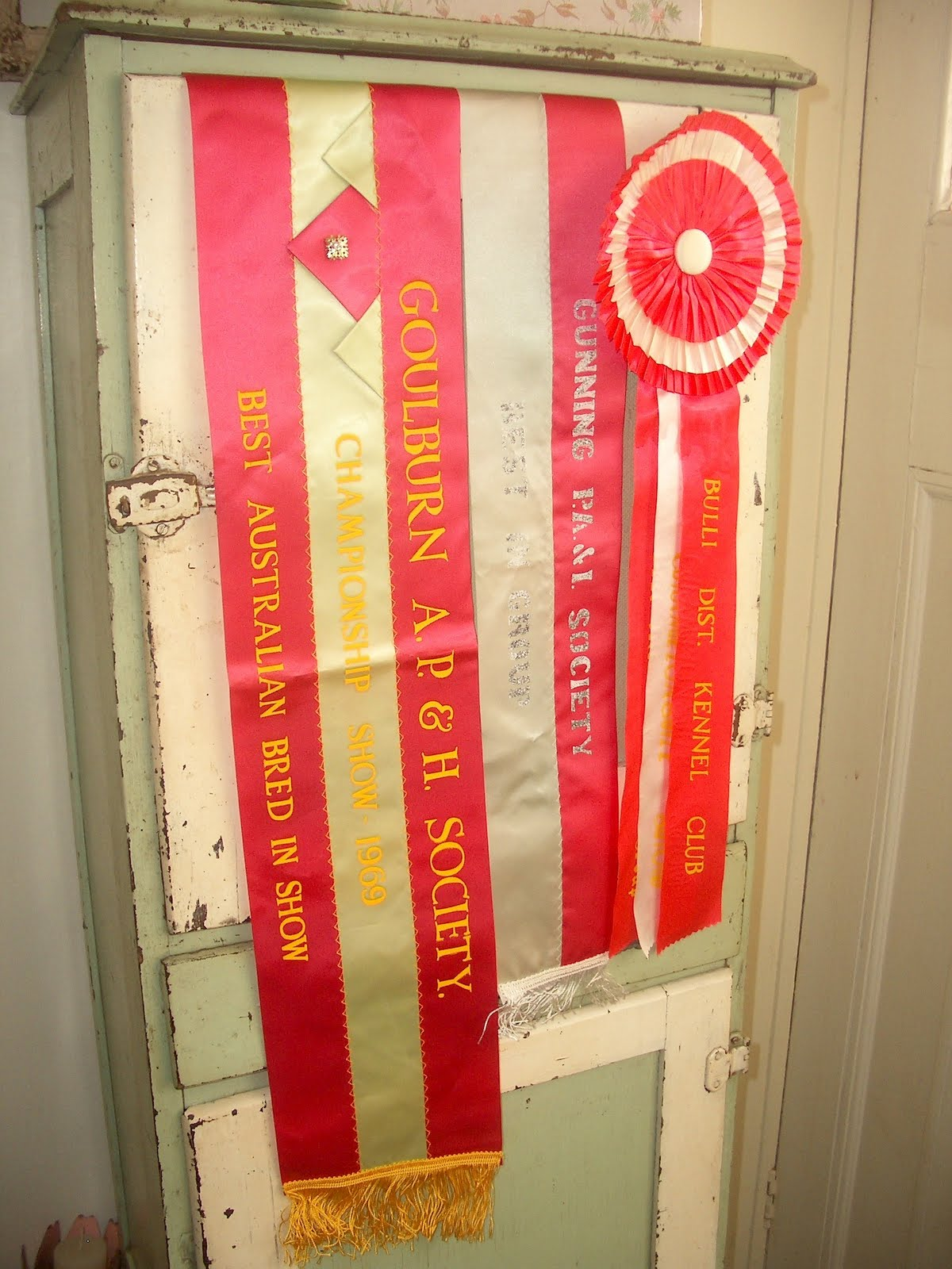 A Treasured Past: Queanbeyan Swap Meet '10 Part 4: Dog Show Ribbons