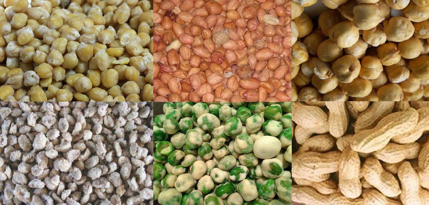 Kacang Putih Life Of Lopsided 8