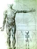 Cómo hacer bp postural
