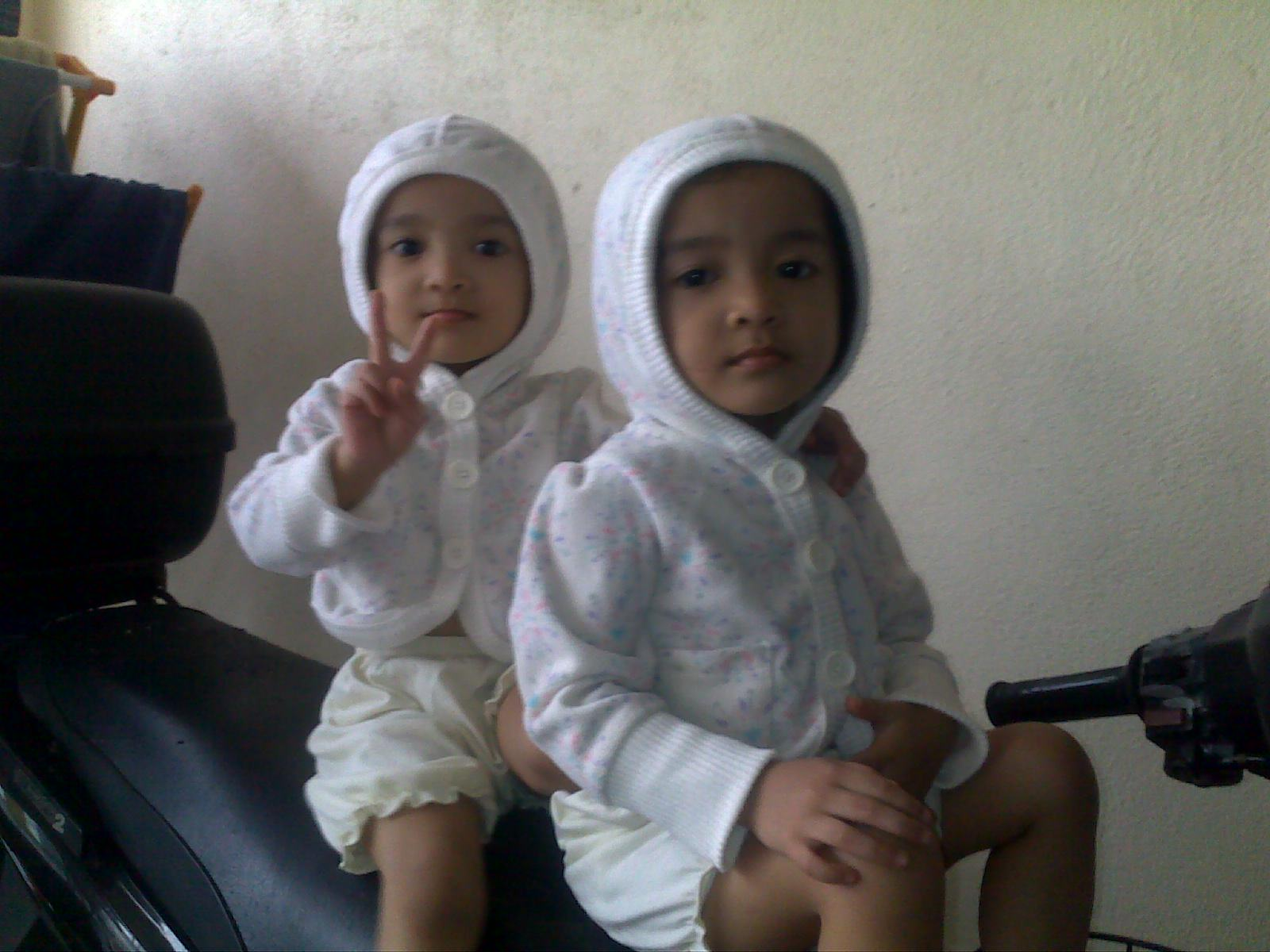 Geng Kembar Dot Com Kisah Kisah Anak Kembar Yang Mencuit Hati