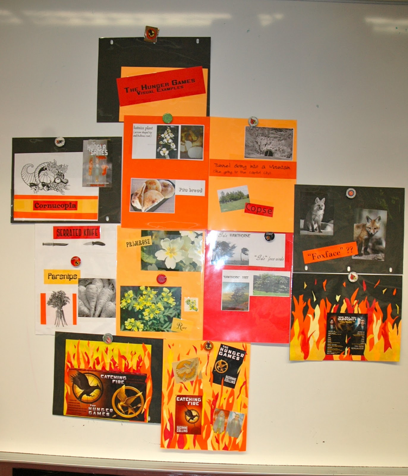 Hunger Games Lessons  Use Visual Aids in Your Classroom to Generate     Classroom Connections  Using visual aids in your classroom from  www hungergameslessons com
