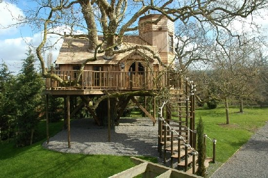 Did You Want To Live In A Tree House When Were Children Growing Up What Better Way Sleep Than Directly Under The Branches Of Protective