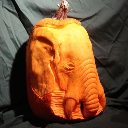 elephant pumpkin