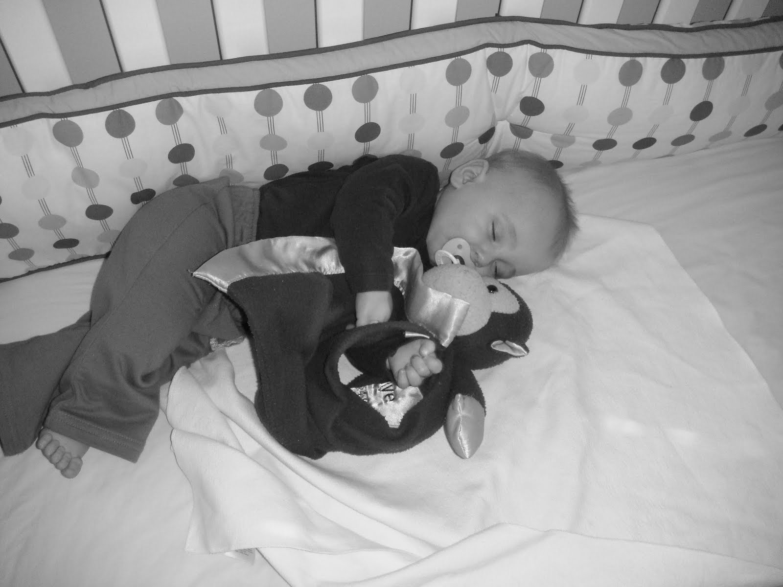 9 Month Pediatrician Visit