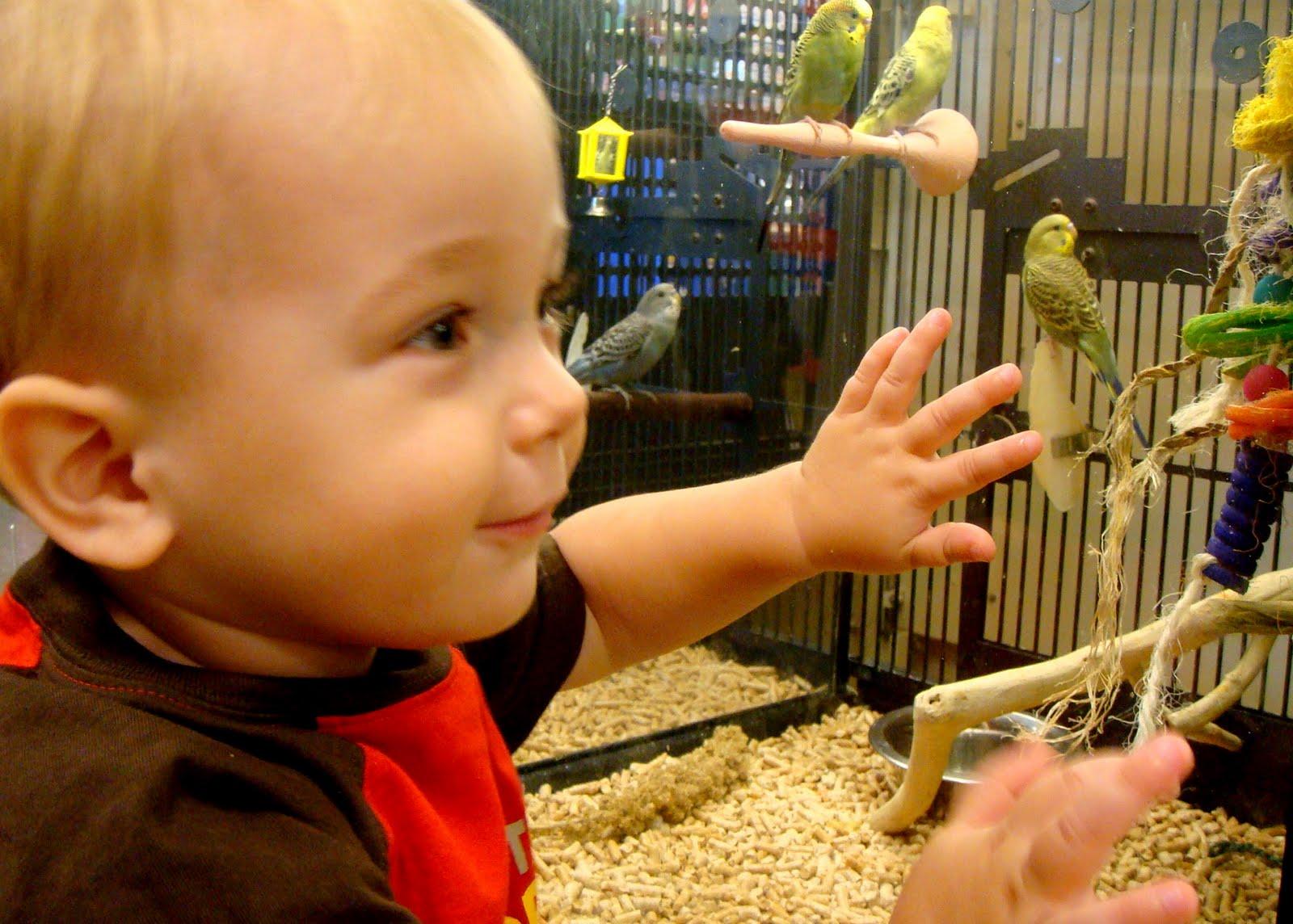 Petsmart: Valdosta's Zoo