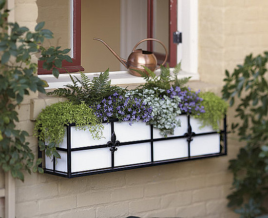 This Is A Gorgeous Window Box Perfect For Lower Where It S Fine Texture Can Be Reciated
