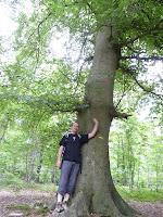 リスル=アダンの森 Forêt de L'Isle-Adam