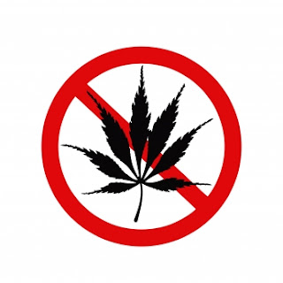 cannabis sante les lois du cannabis au volant. Black Bedroom Furniture Sets. Home Design Ideas