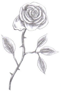 How To Draw Rose Hard