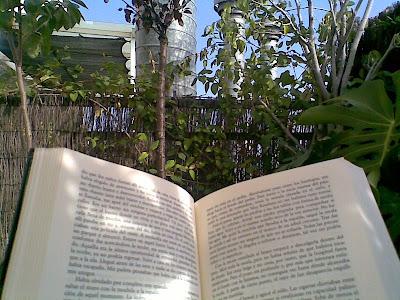 Leyendo Crónica Pájaro, de Murakami, en Barcelona