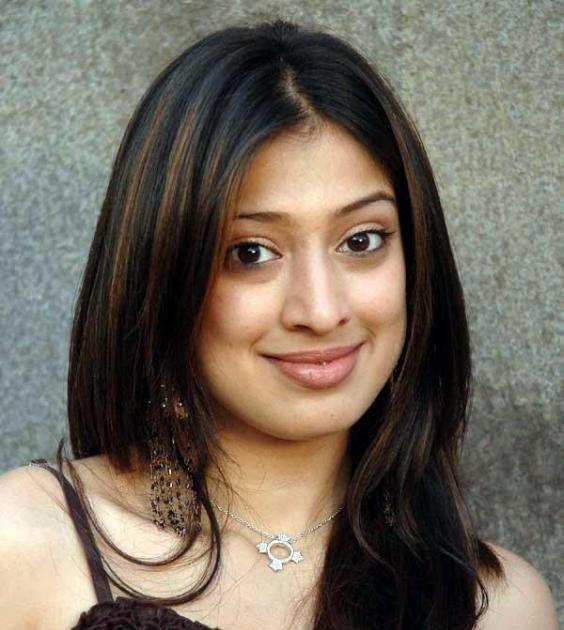 South Indian Actress Hot Photo: Lakshmi Rai Hot Actress