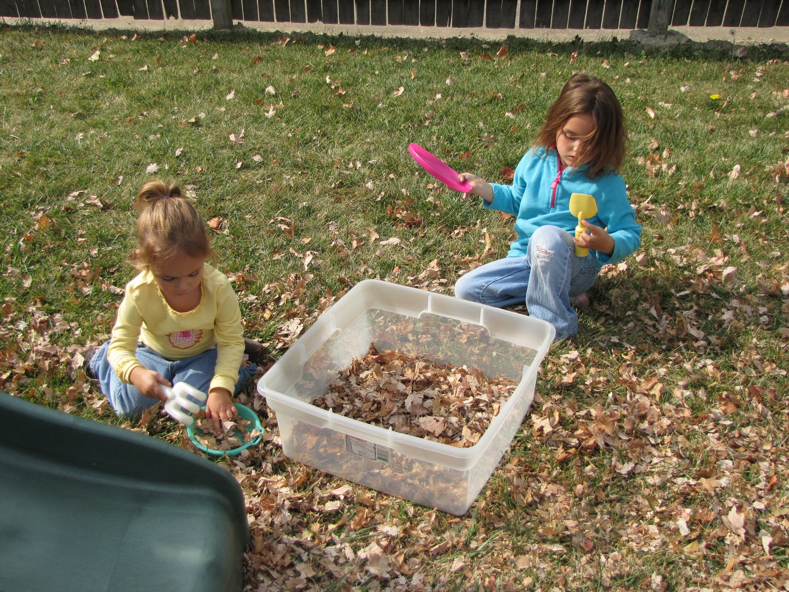 Fall Themed Activities Week 2