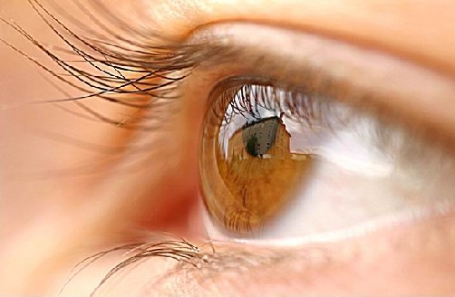 Information About Eye Health Care