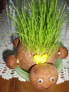 Boneka Horta Kura-kura  ..Saat belum tumbuh rambutnya boneka ini terlihat  seperti kura-kura. Namun setelah rambutnya tumbuh akan terlihat seperti  landak. 522853e82a