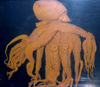 Screen shots from TV: Octopus Vuglaris
