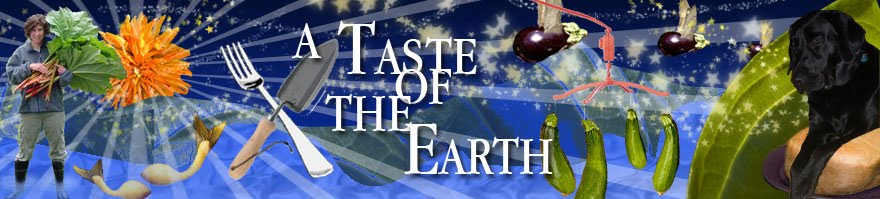 A Taste of the Earth