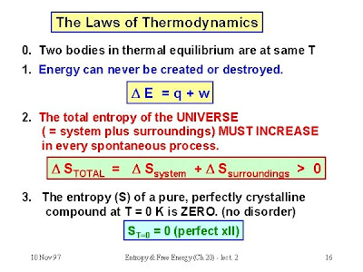 Thermodynamics laws and life essay