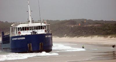 SAILORS, MARINERS & WARRIORS LEAGUE: Cattle Stuck As Ship