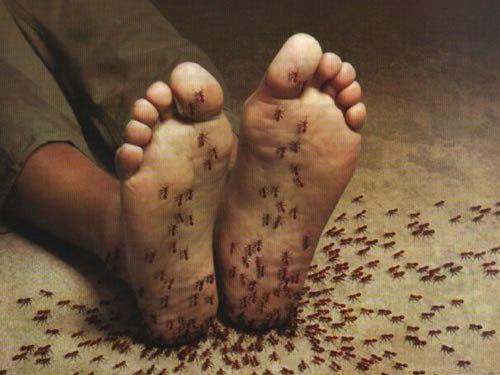 Sensação uma que formigamento nos o de pés significa