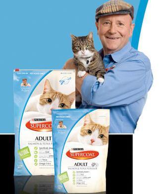 Cheap Cat Food