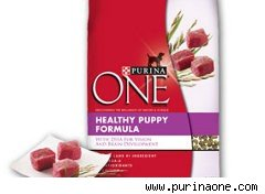 Ingredients In Purina One Beyond Cat Food