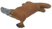 platypus toy miniature