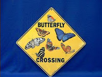 butterfly crossing sign