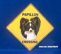 papillon crossing sign