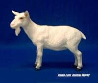 white goat figurine statue