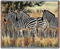 Zebra Blanket Throw Tapestry Zebras Trio