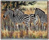 Zebra Blanket Throw Tapestry Zebras Trio