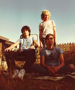 meat puppets discography torrent
