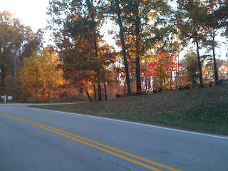 Fall colors on a dirt road
