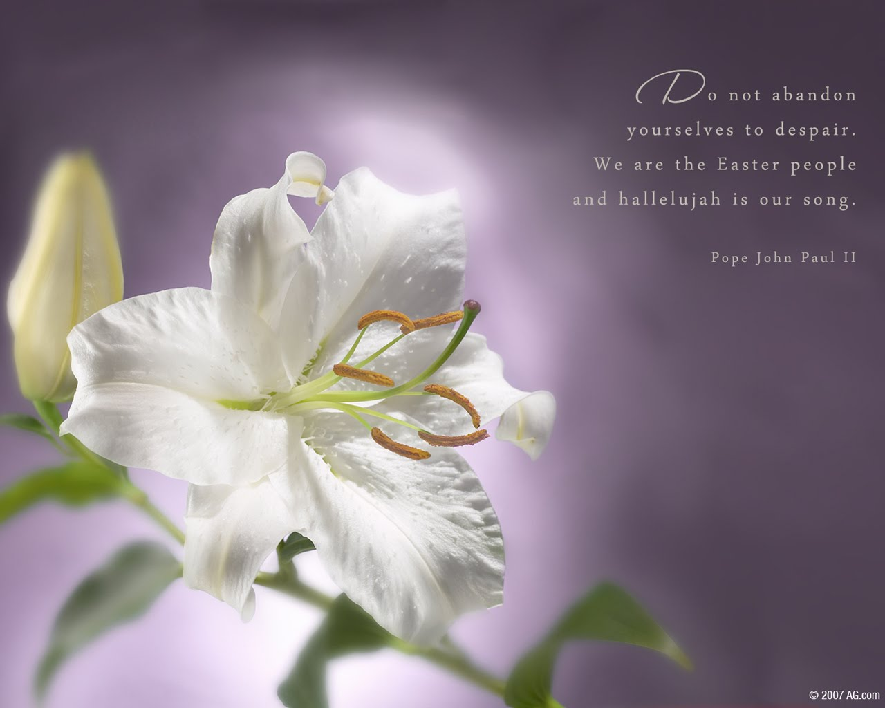 1000 Images About Easter Wallpaper On Pinterest: 1000+ Images About Pope John Paul II On Pinterest