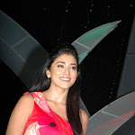 Photos of Shriya Saran at Audio Launch of Komaram Puli  Read more: Malayalam Movie World   Sexy Actress Photos